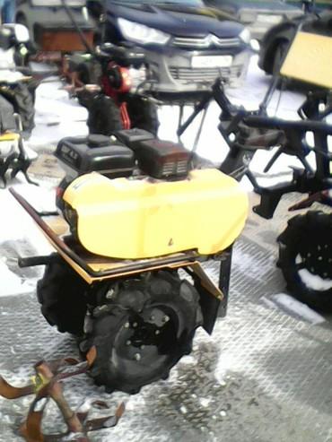 Medium a495
