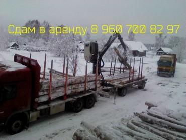 Medium 88b5283863f1c1ca