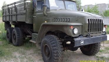 Medium 242d