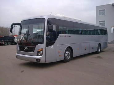 Medium 91a07f61a006766d