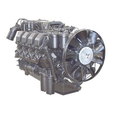 Medium 96d9