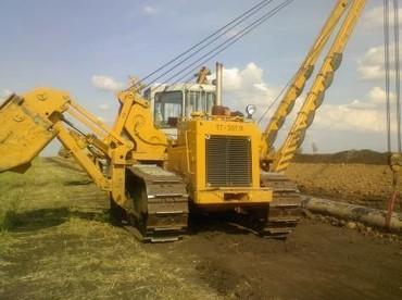 Medium 4081018cbcabf216