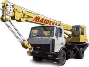 Medium 95df01f62ef28826